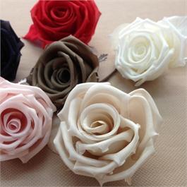 Silk Rose thumbnail